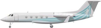 Gulfstream G III Image