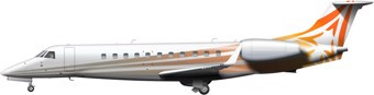 Embraer Legacy 600 Image