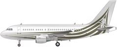 Airbus ACJ318 Image