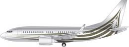 Boeing BBJ 737 Max 7 Image