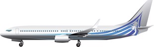 Boeing BBJ 3 737 Image